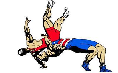 На першості ДЮСШ з літніх видів спорту з вільної боротьби були видовищні сутички та напружена боротьба