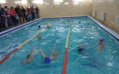 До Дня Святого Миколая у Тернополі відбулася першість з плавання (ФОТО, ВІДЕО)