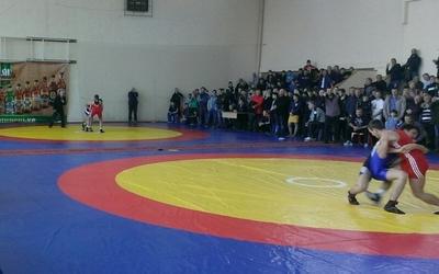 Юні борці вільного стилю з Тернопілля привезли з Кам'янця-Подільського чотири медалі