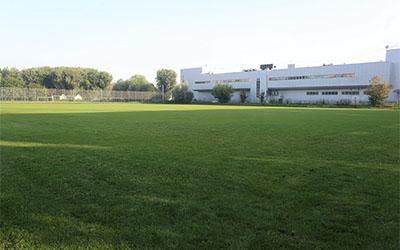 У парку Топільче облаштовують футбольне поле